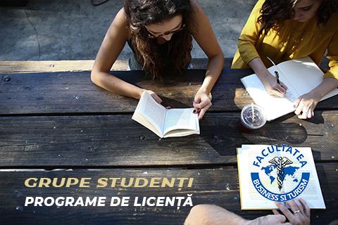 Grupe studenți – programe de licență